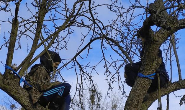 Πολωνία, Πόζναν: Αναρχικοί εμποδίζουν την εκκένωση κήπου αγροτεμαχίων